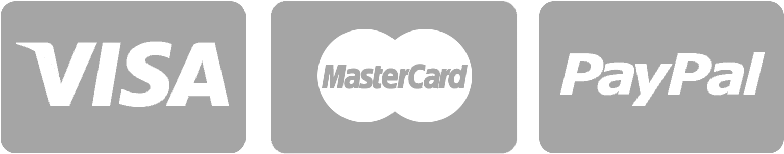 we accept visa master paypal